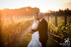 Vineyard Wedding at