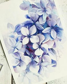 Watercolor Plants, Easy Watercolor, Watercolor Cards, Watercolor Illustration, Watercolour Painting, Watercolor Flowers, Hydrangea Painting, Great Works Of Art, Water Art