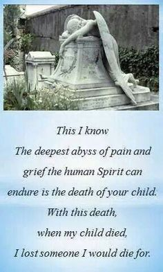 So VERY TRUE. When I lost my son it's been the deepest hardest abyss I could ever EVER go through and I'm still in it I doubt VERY much that I will ever be out of it. The day I lost my son I lost half my heart and half my soul. I'm TOTALLY alone ane yet I have my husband,son,daughter-in-law,grandchildren all around me I DON'T HAVE MY BEST FRIEND,MY CONFIDANT,MY OLDEST SON,MY 1st BORN CHILD,MY ANGEL,MY HERO,MY CHILD.I MISS HIM with EVERYTHING I have in my soul. 3 ~:'(