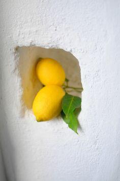 lemons in Alentejo, Portugal Lemon Lime, Lemon Grass, Lemon Pictures, Lemon Head, Apple Pear, Blood Orange, Orange Yellow, Vitamin C, Strawberry