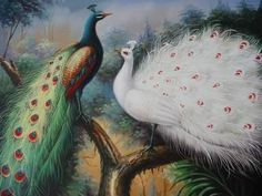 12X16 inch Animal Canvas Art Repro White&Color Peacock Lovers globalartdepot,http://www.amazon.com/dp/B0044TMRWM/ref=cm_sw_r_pi_dp_HkrKsb0MXJ45DTPD