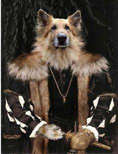 1000 ideas about pet art on pinterest dog portraits