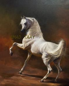Arabian horse, stallion, horse, by Emad Taay Horse Photos, Horse Pictures, Horse Drawings, Animal Drawings, Horse Wallpaper, Beautiful Arabian Horses, Horse Anatomy, Islamic Paintings, Horse Artwork
