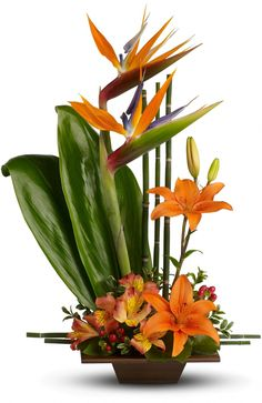 Send good feng shui someone's way with this striking arrangement. Orange flowers, gorgeous green ti leaves and small bamboo-like canes are arranged in a balanced, Zen-like composition.