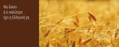 Παράδοση… στο καλό ψωμί! | Γατίδης - Αρτοποιία Ζαχαροπλαστική Fresh, Movie Posters, Film Poster, Film Posters, Poster