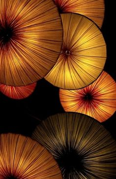 ~~ Golden Lantern Abstract by photographer Atsushi. Lanterns hanging in a hotel made for the perfect abstract image. Umbrella Art, Under My Umbrella, Popular Photography, Art Photography, Art Et Nature, Umbrellas Parasols, Abstract Images, Mellow Yellow, Yellow Black