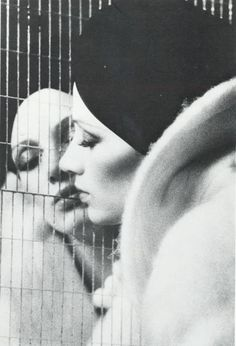 Donna Mitchell by David Bailey 1970s