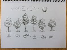 Tree fineliner practice. How to create textures with scribbles. Shoutout to…