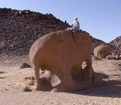 رياح الصحراء - بحث في تويتر