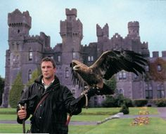 Falcon handler photo courtesy Ashford Castle.