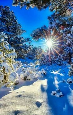 Beautiful nature with the sun glistening through on the beautiful snowfall. Winter Photography, Landscape Photography, Nature Photography, Travel Photography, Winter Wallpaper, Winter Magic, Winter Snow, Winter Scenery, Winter Sunset