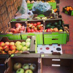 Julio Basulto, la dieta vegetariana, el efecto talismán y otros asuntos