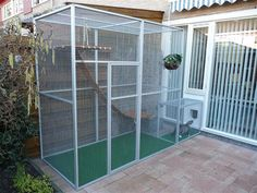 Best Quality Cat Enclosures And Cat Tunnels Ideas 70 - meowlogy