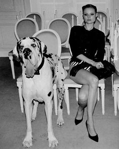 great dane - cannot wait to get mine :)  http://www.milestostyle.com/?p=1500