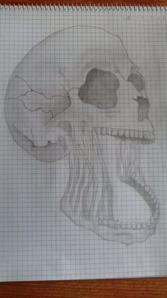 Another skull