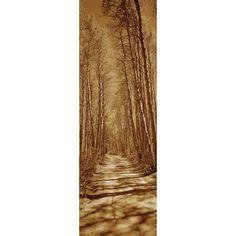 Trees along a road Log Cabin Gold Mine Eastern Sierra Californian Sierra Nevada California USA Canvas Art - Panoramic Images (36 x 12)