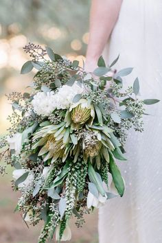 Cream and White Protea Wedding Bouquet. Inspiration and ideas for wedding and bridal flowers. Proteas are a great flower to include in your bridal bouquet and centerpieces. White Wedding Bouquets, Flower Bouquet Wedding, Floral Wedding, Green Wedding, Flower Bouquets, Green Bouquets, Protea Wedding, Bridal Bouquets, Bridal Gown