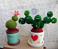 Cactus middle size. 150THB . You see me @ facebook.com/happyBySuchanya