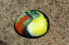 TOUCAN hand painted sea stone by palmeras on Etsy, $30.00
