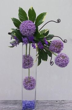 Purple Allium (the giant purple balls), purple statice (the smaller purple flower), variegated fatsia leaf (the green foliage) monkey tail fern shoots and blue colored glass in the bottom of a tall cylinder vase to simulate water. Everything in this hi-style arrangement is fresh flowers. by maggie