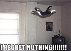 i regret nothing!!!!!!!! :D