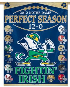 This Notre Dame Fighting Irish Vertical Flag is perfect! College Football Logos, Nd Football, Notre Dame Football, Football Players, Irish Fans, Go Irish, Notre Dame Athletics, Notre Dame Logo, Touchdown Jesus