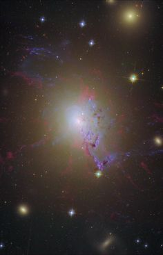 Active galaxy NGC 1275 is the central, dominant member of the large and relatively nearby Perseus Cluster of Galaxies. Wild-looking at visible wavelengths, the active galaxy is also a prodigious source of x-rays and radio emission.