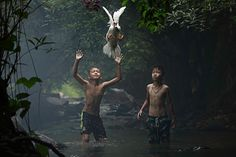 Winners of the National Geographic Photo Contest 2015 - in pictures