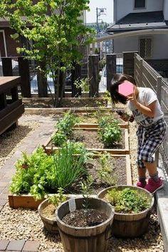 「畑 庭 仕切り」の画像検索結果