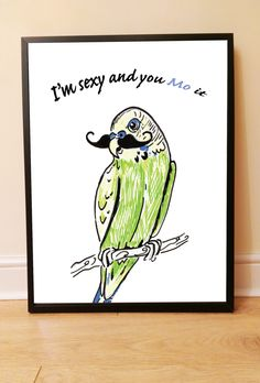 New to drknice on Etsy: Printable File:  Budgie with Moustache 'I'm sexy and you Mo it' Art Print Instant Download Art Printable 16 x 20 inch Wall Decor image (3.00 GBP)