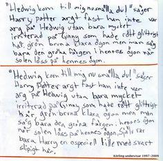 Utveckla meningen - Körling undervisar 2009
