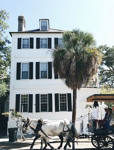 Travel Diary: Charleston - Exactly like nothing else. | In Honor Of Design