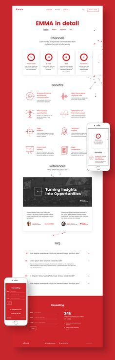 Brand, visual Identity and microsite for monitoring tool EMMA