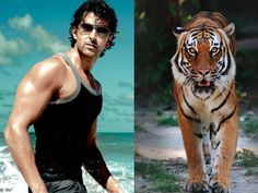 Celebrity fitness trainer Satyajit Chaurasia is busy training to Hrithik Roshan fight with tigers his upcoming Blockbuster movie Mohenjo Daro, .
