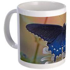 Spicebush Swallowtail Mugs