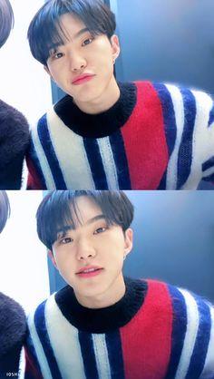 Seventeen Hoshi, Seventeen Memes, Adore U, Pledis Entertainment, South Korean Boy Band, Boy Bands, Posters, Artists, Celebrities