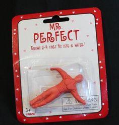 Grow Your Own Boyfriend Mr. Perfect Valentine Gag Gift #Ganz #ValentinesDay