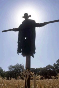 Jeepers Creepers: love the franchise