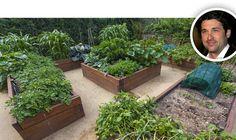 HomeAdvisor   4 Celebrity-Inspired Tips for a Stunning Backyard