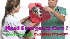 24 Hr Emergency Vet Fort Lauderdale FL. CALL: (954) 773-9297. Offering Emergency Veterinarian Services and Routine Vet Care, 24/7.  A 24 Hour Emergency Veterinary clinic responds to all types of pet emergencies at any time of the day or night.