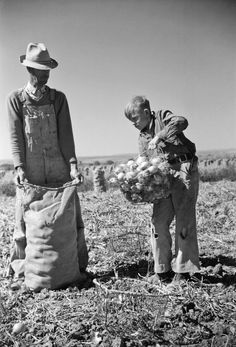 1939 - Colorado Onion Field
