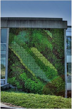 Green Wall Blusson Hall SFU-Burnaby British Columbia-Canada