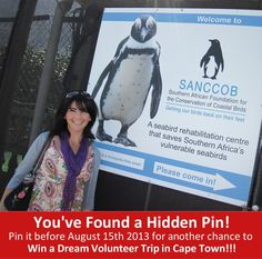 SANCCOB (Southern African Foundation for the Conservation of Coastal Birds) is a leading marine-orientated non-profit organization which has treated more than 90 000 oiled, ill, injured or abandoned African penguins and other threatened seabirds since being established in 1968.