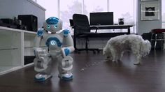 Robot tries to dance. Gif Of The Day, Robot, Funny, Tech, Dance, Life, Dancing, Funny Parenting, Robots