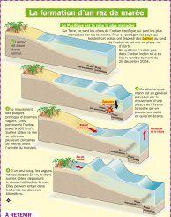 La formation d'un raz de marée - Mon Quotidien, le seul site d'information quotidienne pour les 10-14 ans !