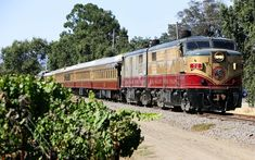 You Can Solve a Murder Mystery on a Wine Train Through Napa Valley | The Napa Valley Wine Train is bringing a brand new experience for wine enthusiasts who like a little mystery to enjoy. #Napa #NapaValley #Travel #Wine #WineTrain #MurderMystery California Vacation, California Wine, Napa Valley Wine Train, Vacation Wishes, Vacation Ideas, Like A Local, Murder Mysteries, Train Travel, Travel Goals