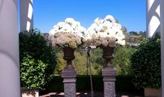 Shells petals white hydrangea Sherwood country club