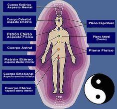 LOS SIETE CHAKRAS CON SUS 7 CAPAS, Y SUS COLORES SON LOS SIGUIENTES:  – El cuerpo físico en general está representado por el chakra raíz situado en el perineo y es de color rojo.  – El cuerpo emocional está conectada con el chakra del aparato reproductor y es de color naranja.  – El cuerpo mental está asociado al chakra del plexo solar y es de color amarillo.  – El cuerpo anímico está relacionado con el chakra del corazón y es de color verde.  – El cuerpo etérico, también conocido como aura…
