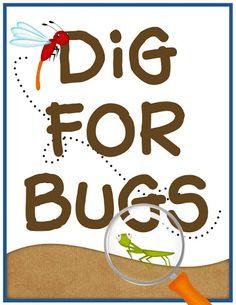 Bug party printables