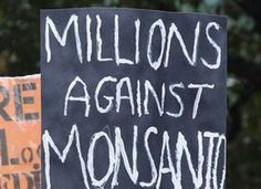 http://www.organicauthority.com/blog/organic/19-studies-suggest-link-between-gmo-foods-and-serious-organ-damage/    Monsanto is evil